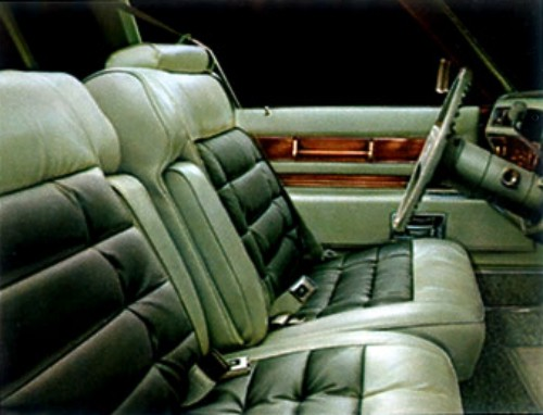 1977 cadillac eldorado interior trim. Black Bedroom Furniture Sets. Home Design Ideas