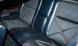 Standard Dark Blue Nylon Cloth and Vinyl interior trim