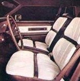 Saddle and White Leather interior