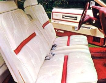Lipstick and White Luxury Group - Leather Seating Surfaces interior trim