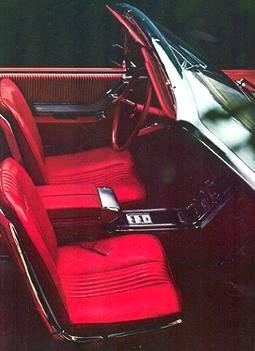 Red Vinyl interior trim