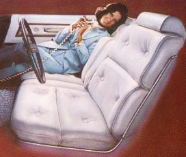 Optional Leather Seating Surfaces and Vinyl Trim