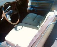 Optional 1976 Thunderbird Kasman Cloth Saddle/Tan interior